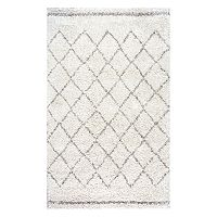 nuLOOM Vennie Lattice Shag Rug
