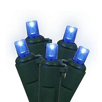 100 Blue Wide Angle LED Indoor / Outdoor Christmas Lights