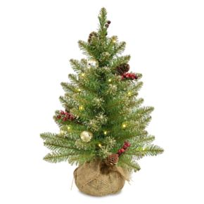 National Tree Company 2-ft. Pre-Lit Glittery Gold Dunhill Fir Artificial Christmas Tree