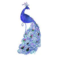 National Tree Company 60-in. Light-Up Peacock Indoor / Outdoor Decor