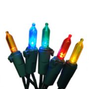 100 Multi-Colored LED Indoor / Outdoor Mini Christmas Lights