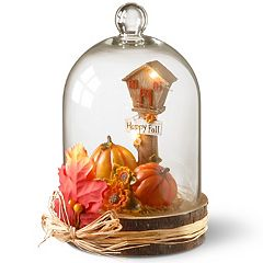 National Tree Company Light-Up 'Happy Fall' Pumpkin Table Decor