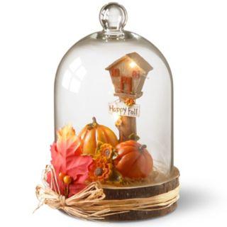 """National Tree Company Light-Up """"Happy Fall"""" Pumpkin Table Decor"""