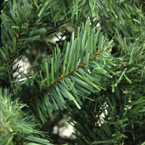 Northlight 6-ft. Mixed Classic Pine Artificial Christmas Tree