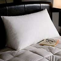 Downlite White Goose Down & Feather Reading Wedge Pillow