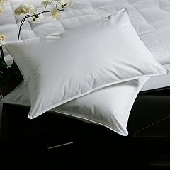 Downlite Plush Top Medium Density Goose Feather 2-pack Pillow