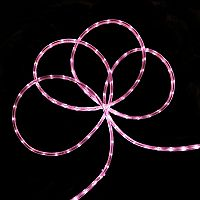 30-ft. LED Indoor / Outdoor Christmas Rope Lights