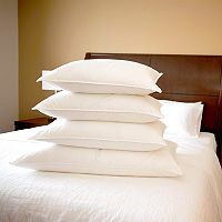 Downlite Medium Density Back Sleeper White Goose Down Pillow
