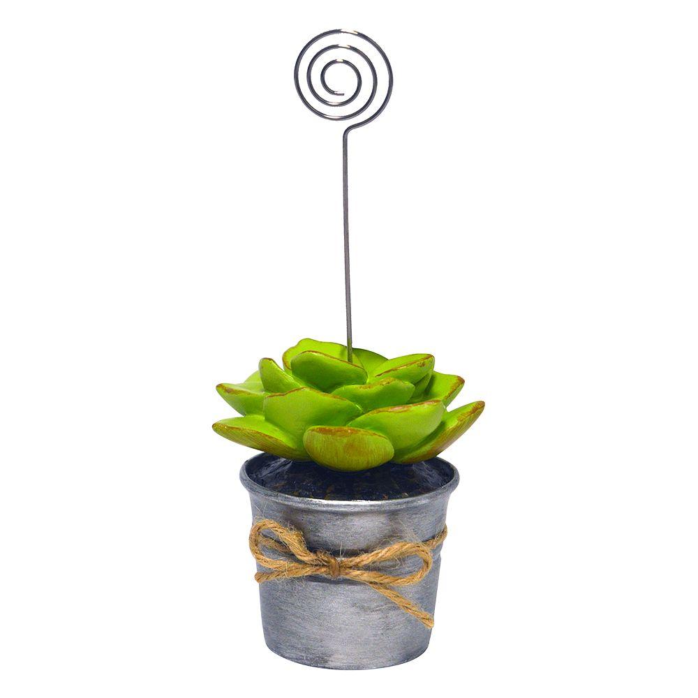 New View Artificial Succulent Photo Clip