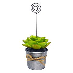 New View Artificial Succulent Photo Clip