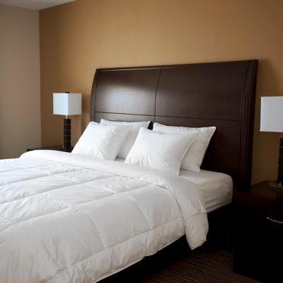 Downlite EnviroLoft Hypoallergenic Down-Alternative Comforter