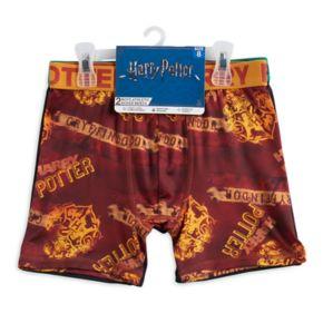 Boys 4-20 Harry Potter 2-Pack Boxer Briefs