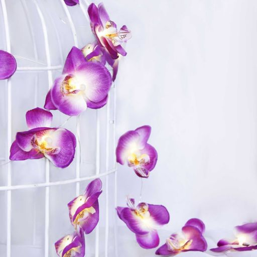 Manor Lane 10-ft. Artificial Orchid String Lights