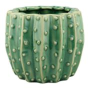 Stonebriar Collection Ceramic Cactus Planter