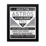 Houston Astros 2017 World Series Champions Framed Team Sign Print