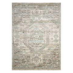 Nourison Euphoria Distressed Framed Medallion Rug