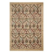Nourison Graphic Illusions Framed Floral Rug