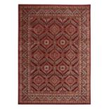 Nourison Graphic Illusions Intricate Framed Medallion Rug