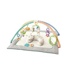 Fisher-Price Safari Dreams Deluxe Comfort Activity Gym