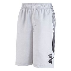 Boys 8-20 Under Armour Big Logo Volley Shorts