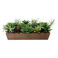 SONOMA Goods for Life™ Artificial Large Succulent Planter