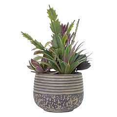 SONOMA Goods for Life™ Artificial Succulent Planter