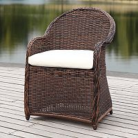 Safavieh Indoor / Outdoor Wicker Arm Chair