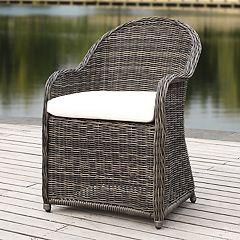 Safavieh Indoor / Outdoor Wicker Arm Chair