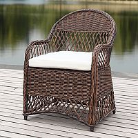 Safavieh Contemporary Indoor / Outdoor Wicker Arm Chair