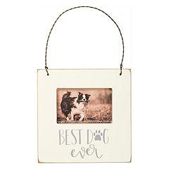 'Best Dog Ever' 2' x 3' Mini Frame