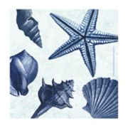Thirstystone 4-pc. Coastal Seashells Coaster Set