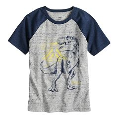 Boys 4-7x SONOMA Goods for Life™ Raglan Graphic Tee