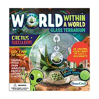 World Within a World Glass Terrarium: Cactus & Succulents by Dunecraft