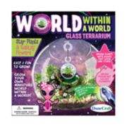 World Within a World Glass Terrarium: Star Plants & Galaxy Flowers by Dunecraft
