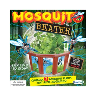 Dome Terrarium: Mosquito Beater by Dunecraft