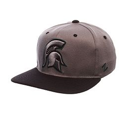 Adult Michigan State Spartans Nebulous Stretch-Fit Cap