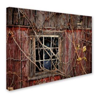 Trademark Fine Art Old Barn Window Canvas Wall Art