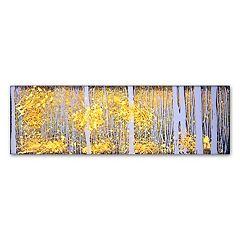Trademark Fine Art Panor Aspens Gray Forest Canvas Wall Art