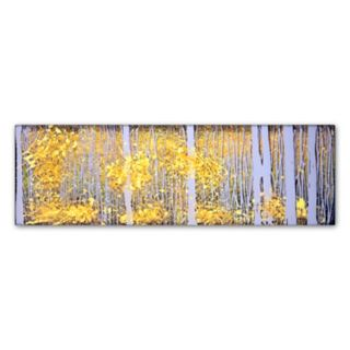 Trademark Fine Art Panor Aspens Gray Forest Canvas Wall Art
