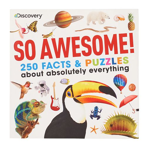 Kohl's Cares Discovery Kids So Awesome! Book