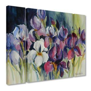 Trademark Fine Art White Iris Canvas Wall Art 3-piece Set
