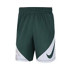 Men's Nike Michigan State Spartans Dri-FIT Shorts
