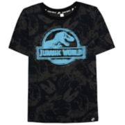 Boys 4-10 Jurassic World: Fallen Kingdom Reactive Graphic Tee