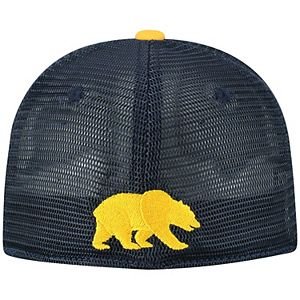 Adult Top of the World Cal Golden Bears Chatter Memory-Fit Cap
