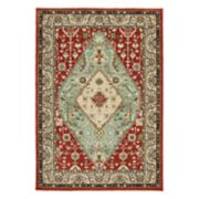 StyleHaven Damien Traditional Framed Floral Medallion Rug