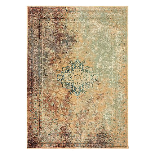 StyleHaven Damien Distressed Traditional Framed Floral Rug