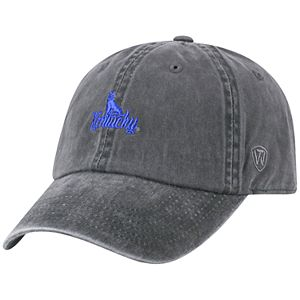 Adult Top of the World Kentucky Wildcats Local Adjustable Cap