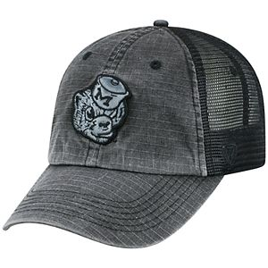 Adult Top of the World Michigan Wolverines Ploom Ripstop Cap