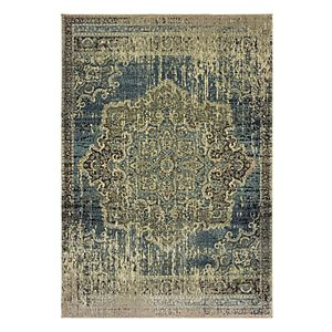 StyleHaven Revere Faded Framed Floral Medallion Rug
