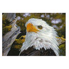 Brumlow Mills Alaskan Monarch Eagle Printed Rug
